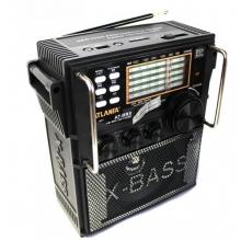 Бумбокс с USB и SD+караоке AT-893 BM-047